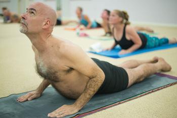 the yoga  baltimore hot yoga and wellness